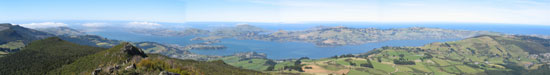 Otago Harbour